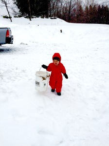 vinny carrying bucket
